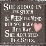 Blog  She stood in the storm