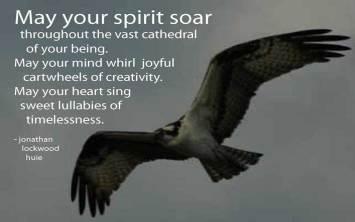 Spirit  May your spirit soar