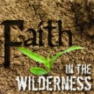 Blog  Faith-In-the-Wilderness